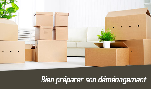 preparer-son-demenagement